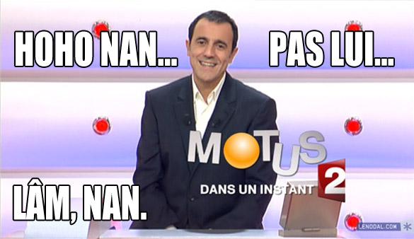 mo-mo-motus-2