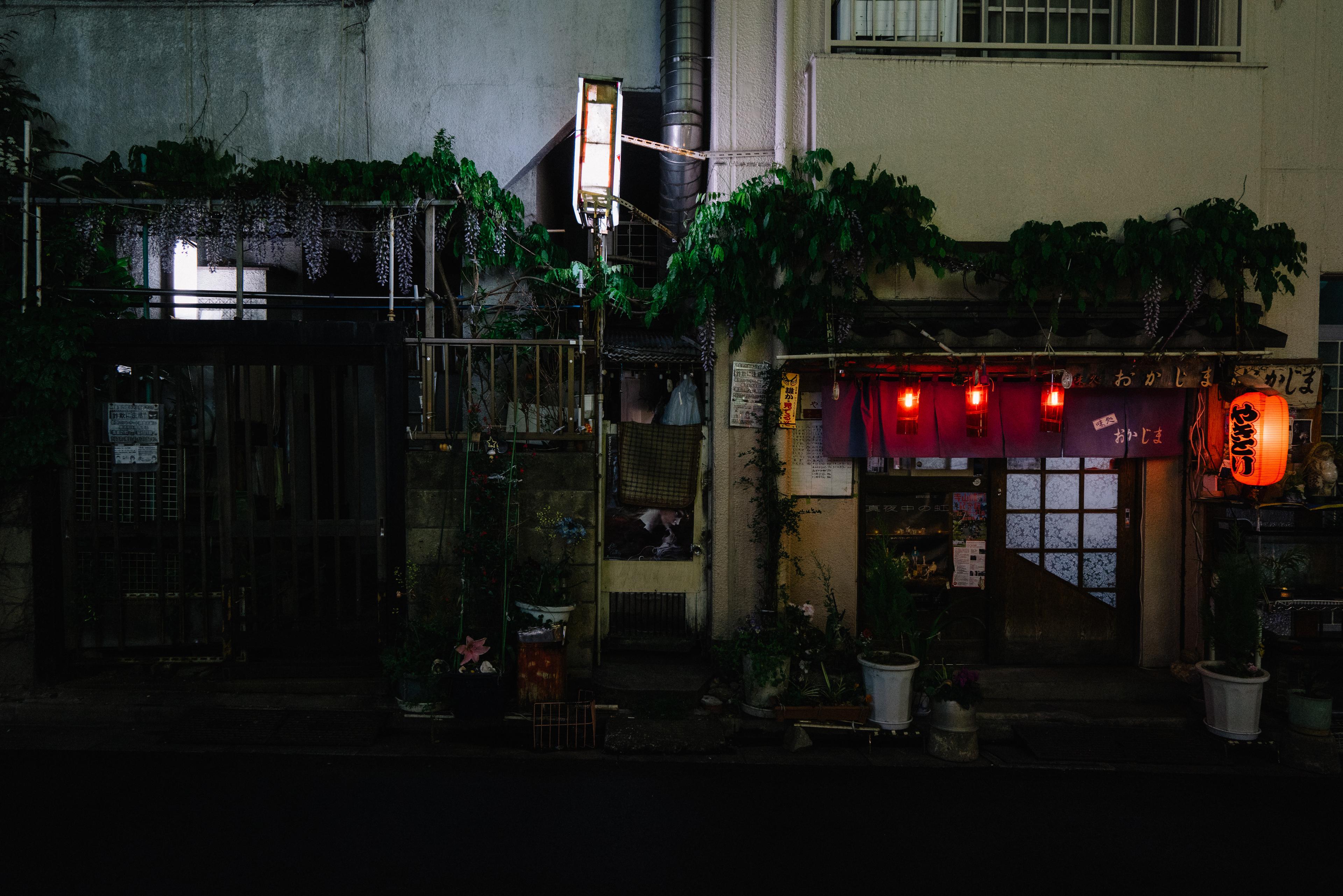 japan-architecture-28