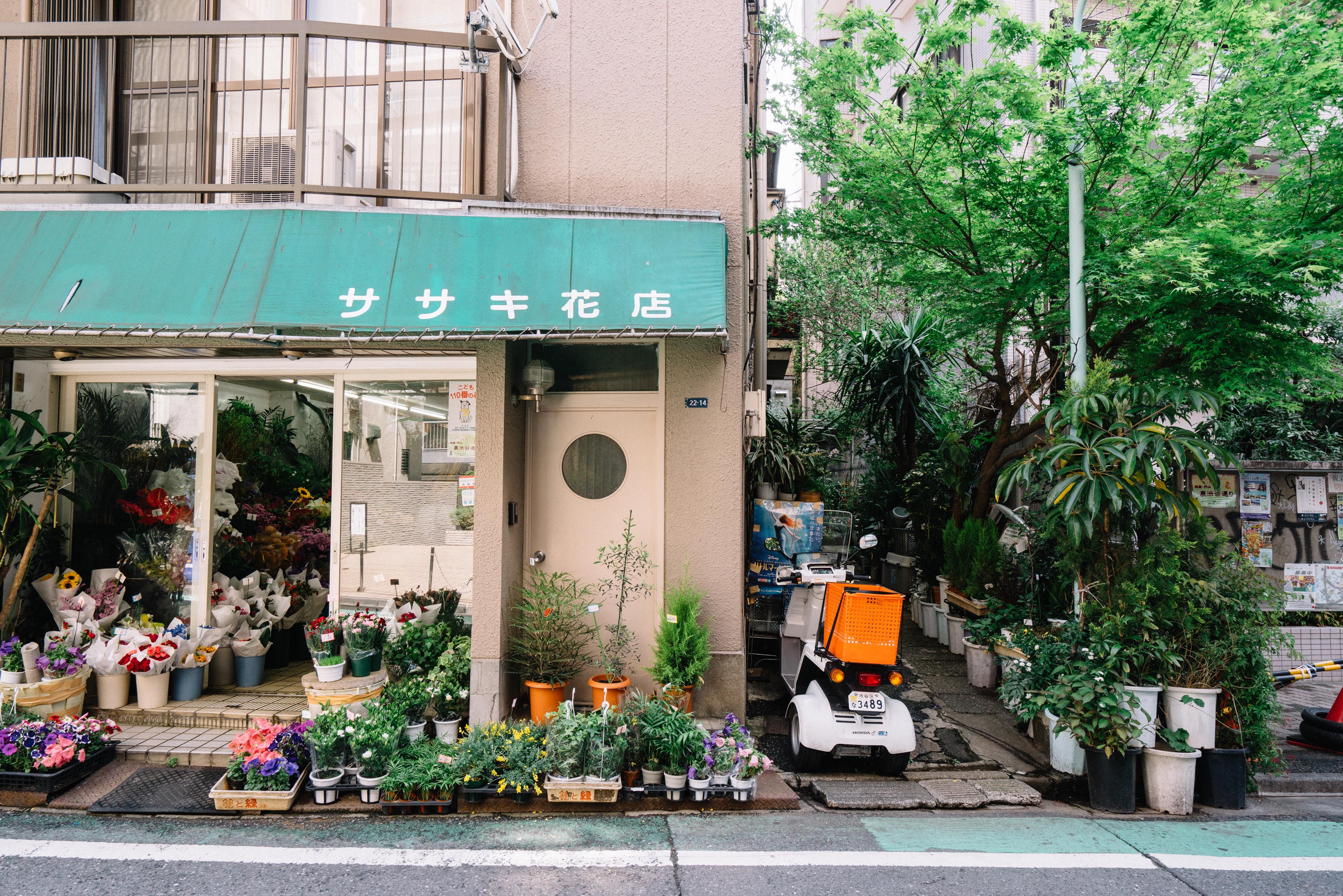 japan-architecture-50