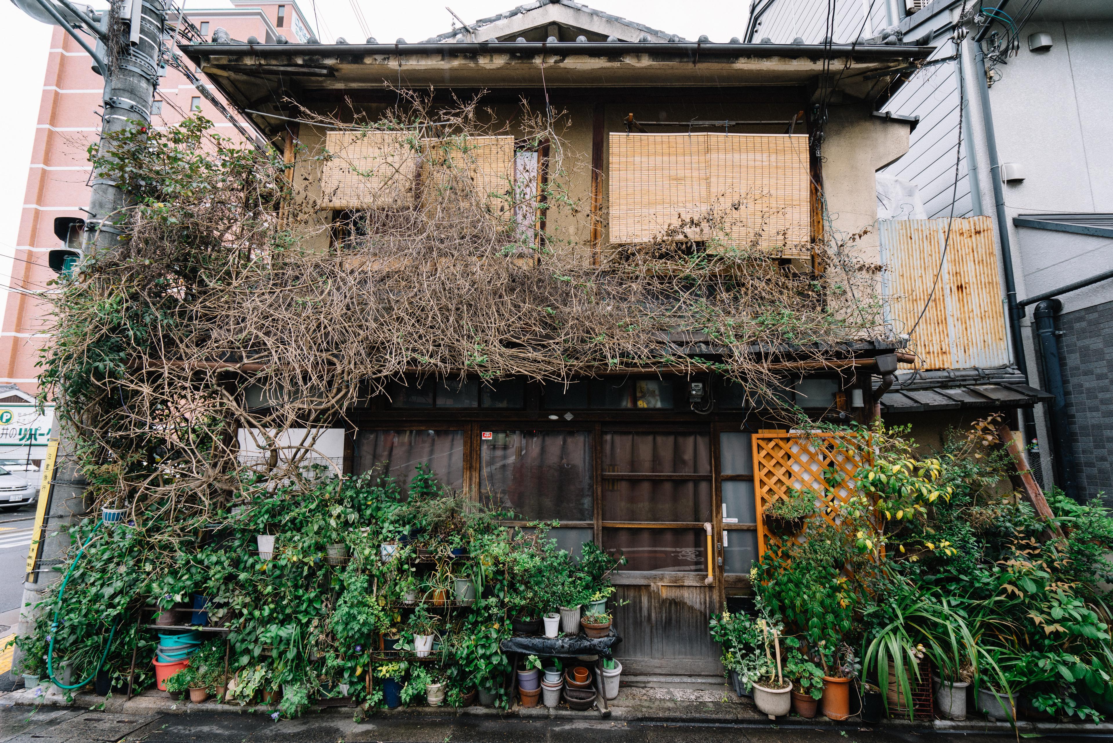 japan-architecture-52