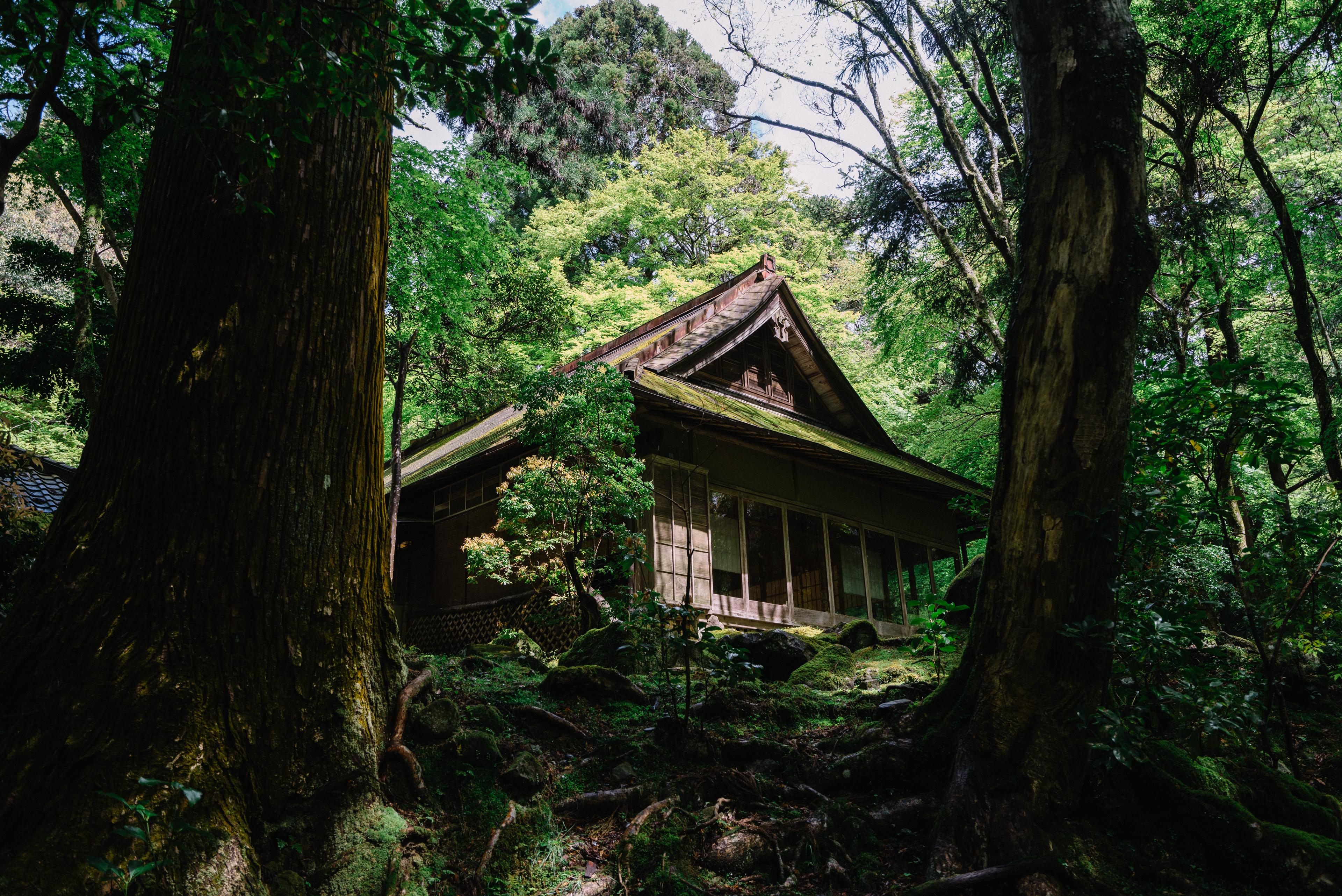 japan-nature17