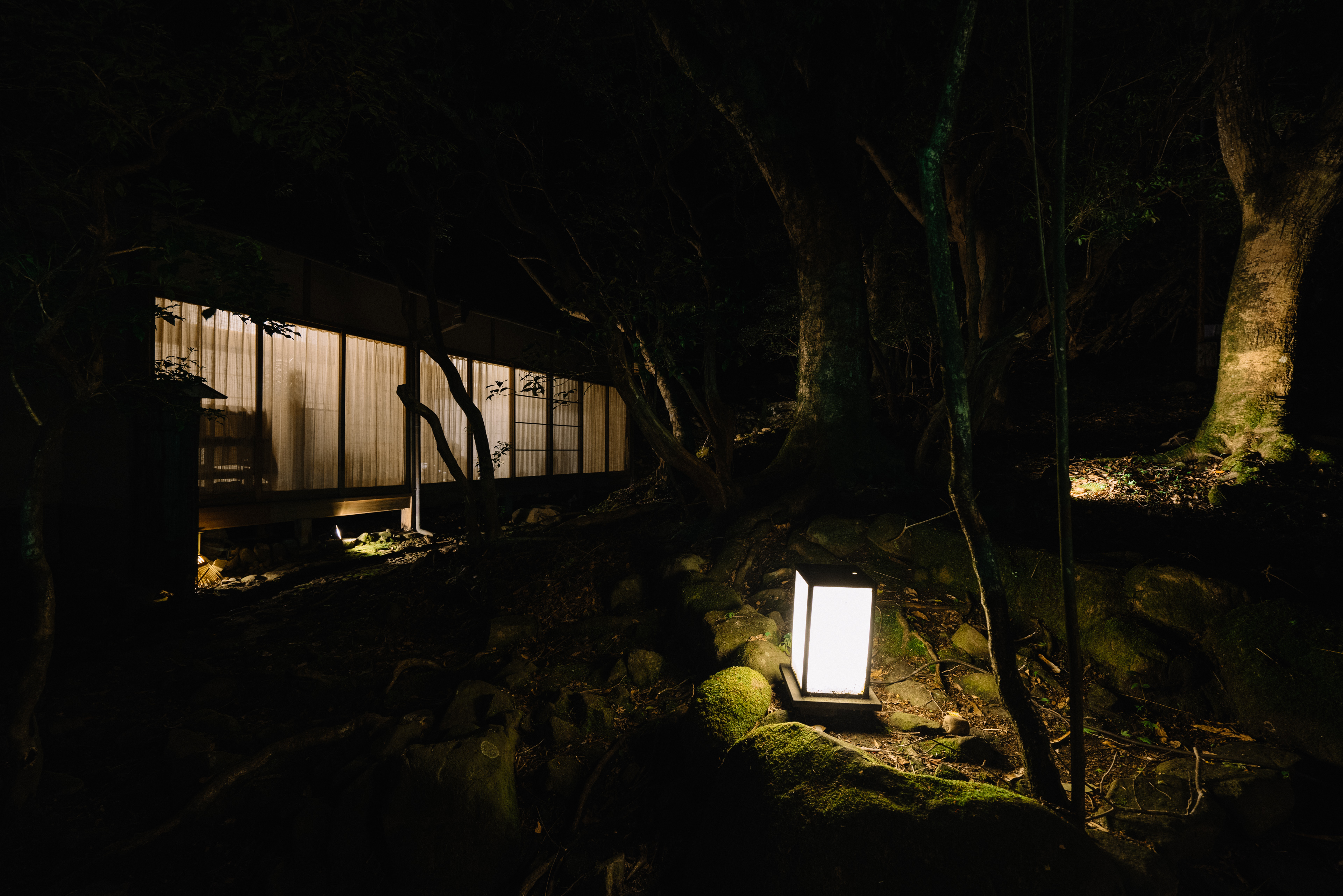 japan-nature18